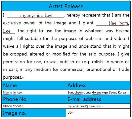 Release Form For Artist  Lovelybom